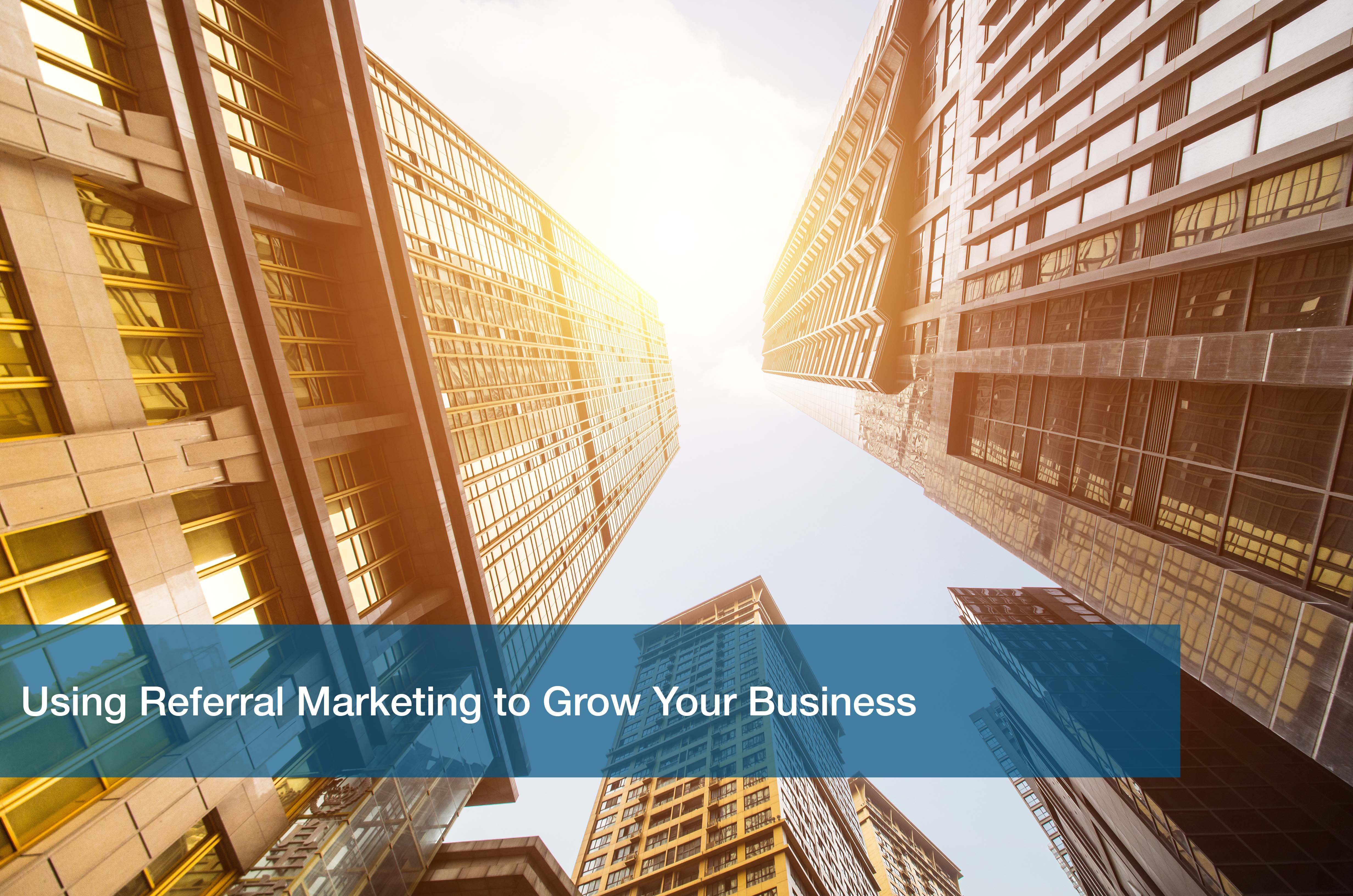 Using Referral Marketing to Grow Your Business
